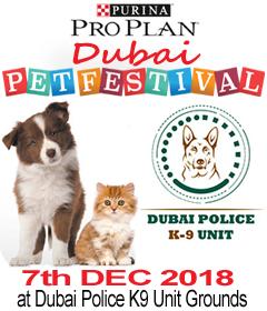 Dubai Pet Festival @ Dubai Police K9 Unit Grounds   Dubai   Dubai   United Arab Emirates